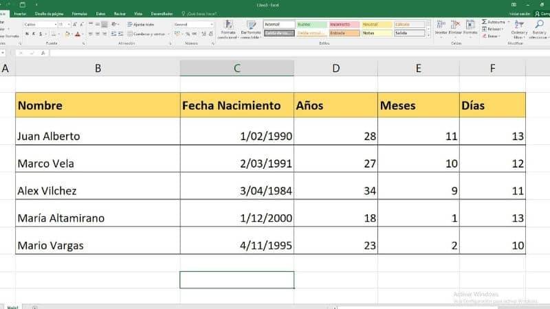 Formato de Microsoft Excel con datos