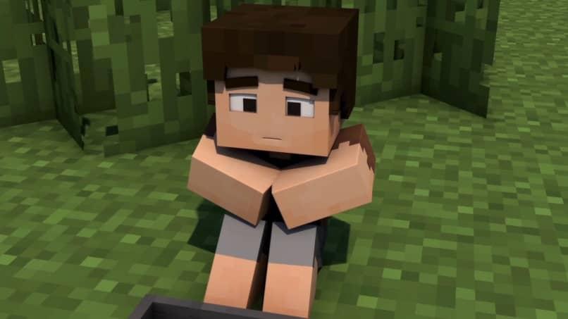 Personaje de chico de Minecraft