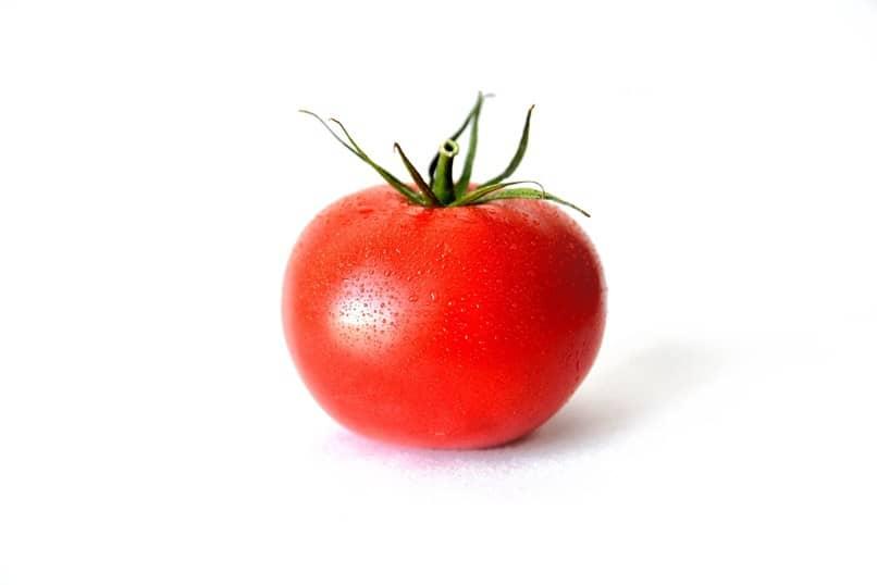 tomate fondo blanco