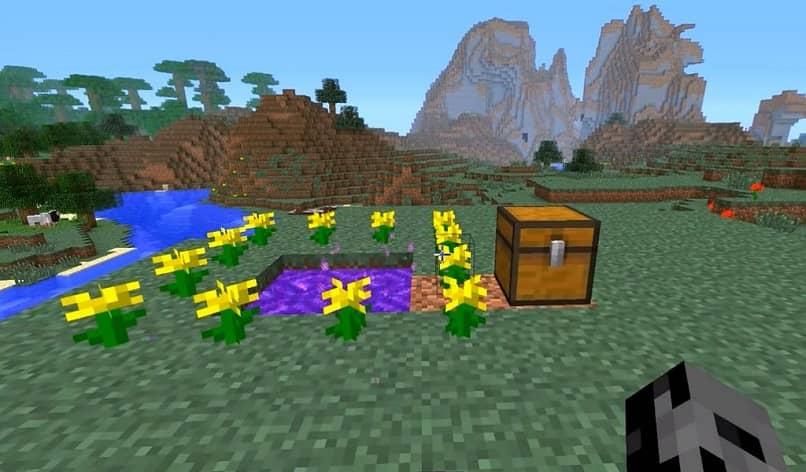 Cofre y puerta de Minecraft