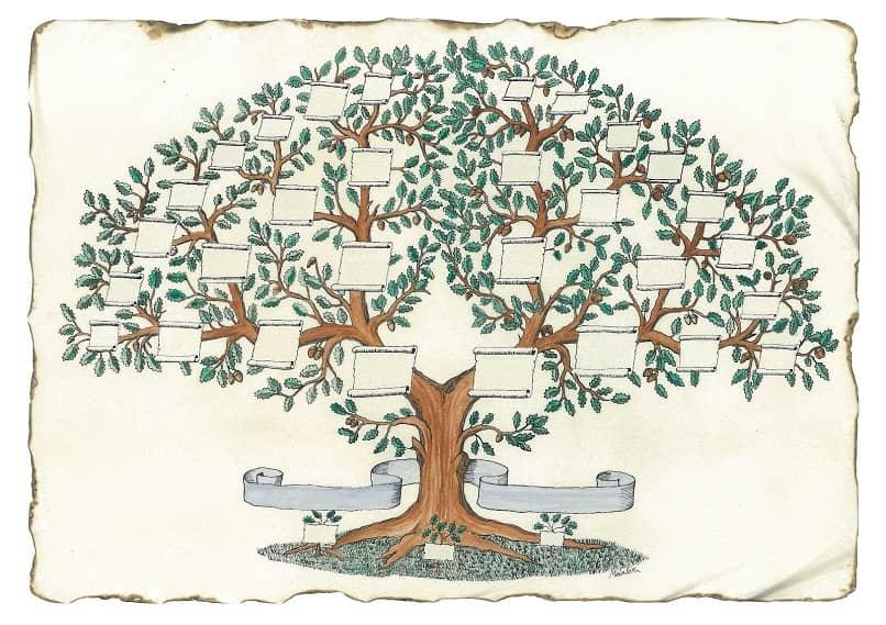 plantilla de árbol genealógico para computadora