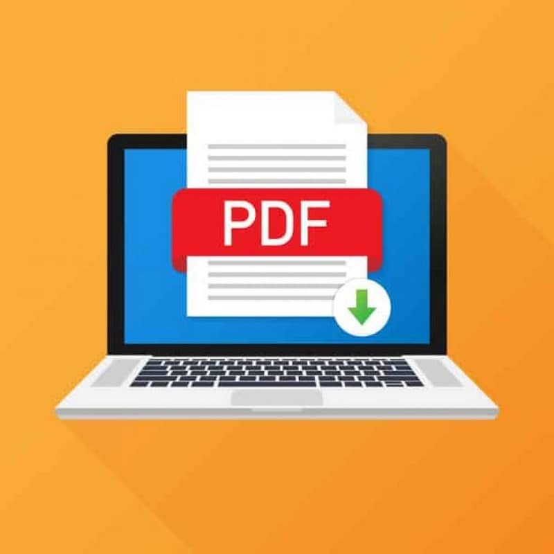 computadora pdf