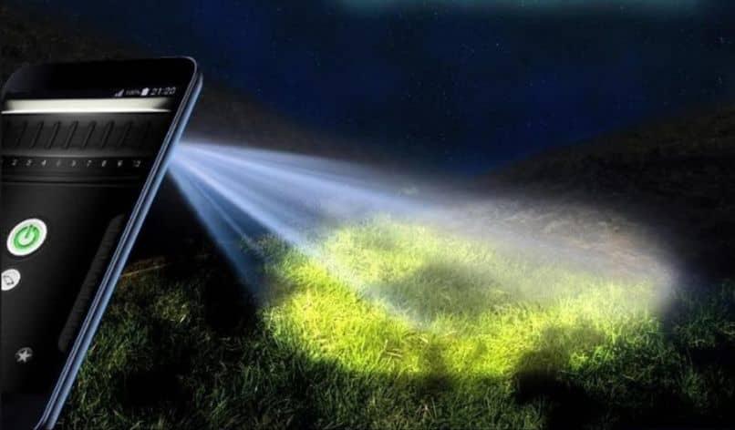 árboles de luz de linterna de teléfono móvil en la noche