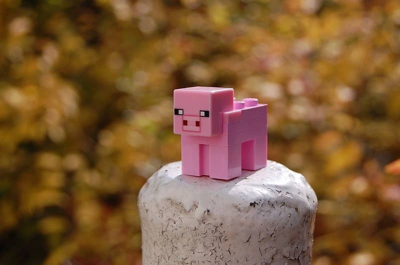 Minecraft animal