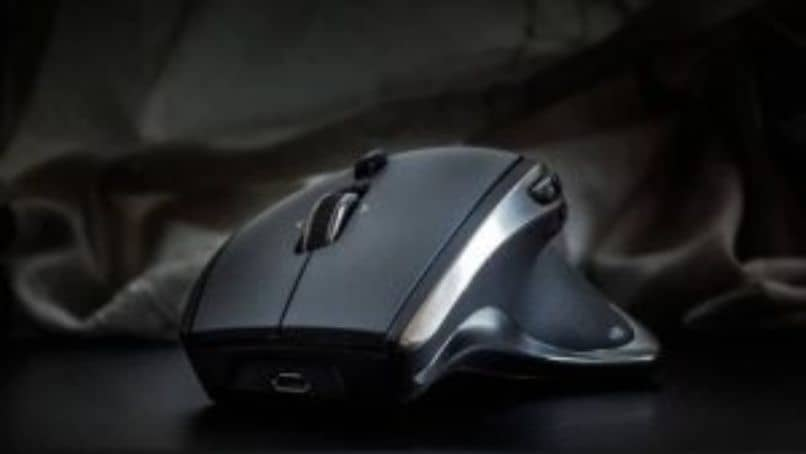 ratón del ratón