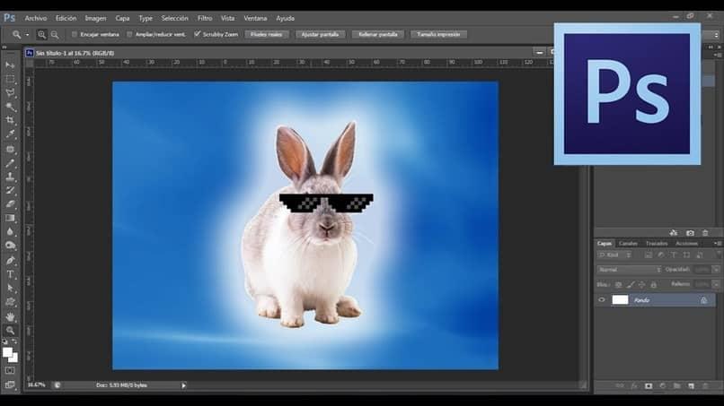 Gafas de conejo en photoshop