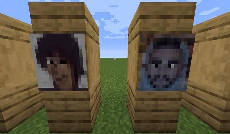 pinturas con caras en minecraft