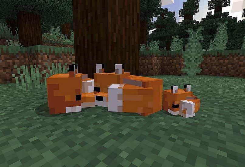 zorros rojos de minecraft