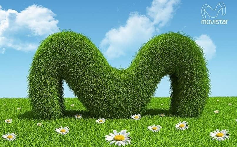 movistar arbusto verde