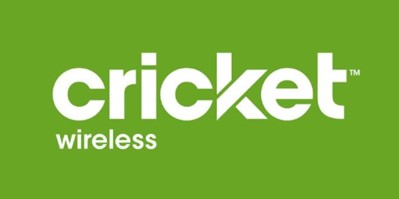 logo de cricket verde