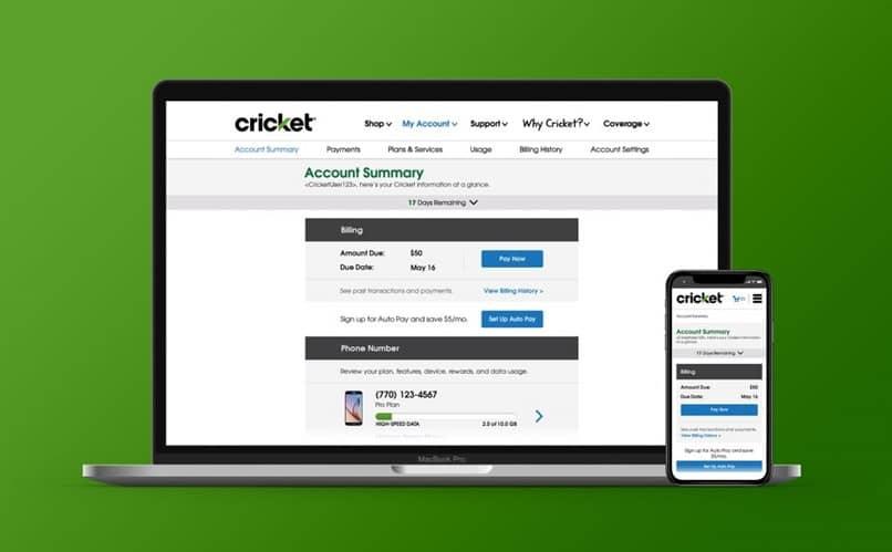 cricket portátil